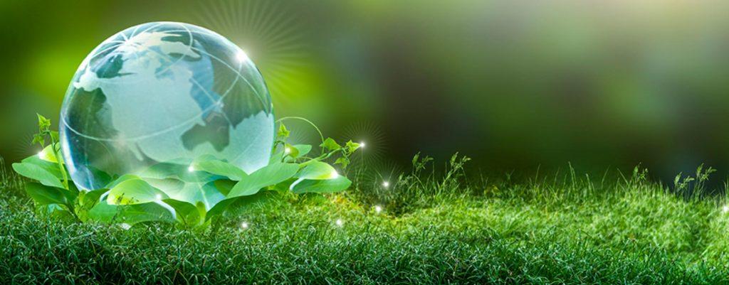 The Virginia Green Travel Star Awards